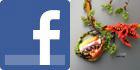 Leela Beads na Facebooku